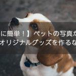 【意外に簡単!】ペットの写真だけで手軽に作れる!オリジナルグッズを作るならコレ!