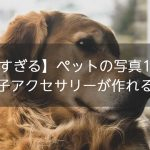 【可愛すぎる】ペットの写真1枚で!オリジナルの「うちの子アクセサリー」が作れるサイト6選