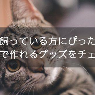 猫を飼っている方にぴったり!愛猫で作れるグッズをチェック